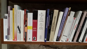 Deleuze on shelf